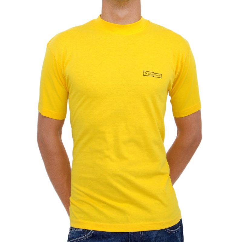 sicani siculi sunflower yellow fronte